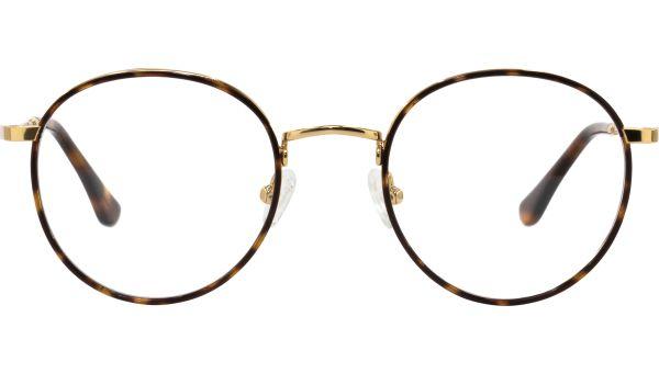 Teagan 4821 demi brown  von Lennox Eyewear