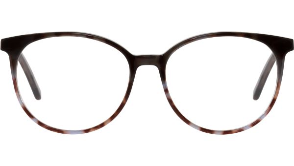 Wynne 5315 demi brown  von Lennox Eyewear