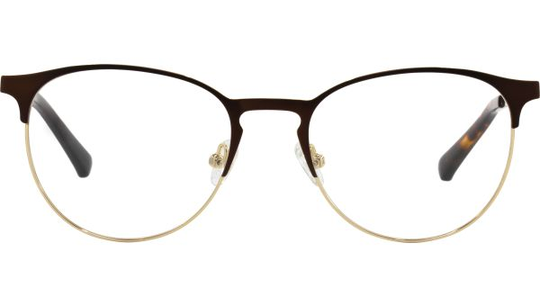 Shay 5118 dark brown/gold  von Lennox Eyewear