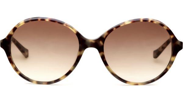 Amaka demi/braun von Lennox Eyewear