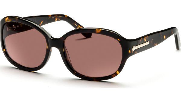 Amara 5616 demi/braun von Lennox Eyewear