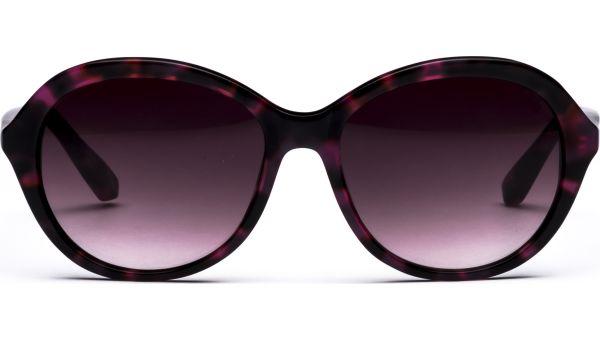 Nila 5516 rot/schwarz von Lennox Eyewear