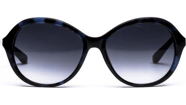Nila 5516 blau/schwarz von Lennox Eyewear