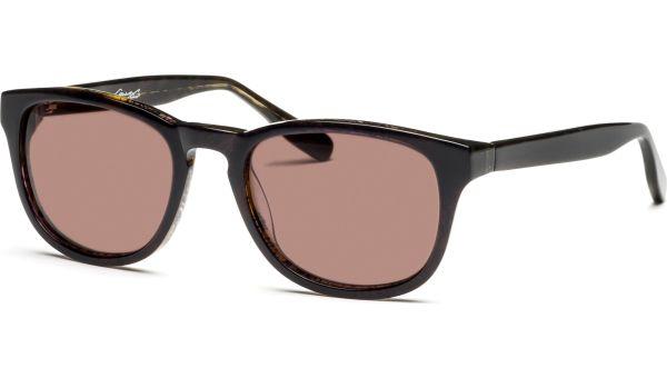 Lirana 5220 demi/braun von Lennox Eyewear