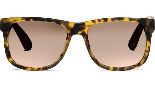 Husano large 5417 demi-braun, Verlaufsgläser, CAT 2 von Lennox Eyewear