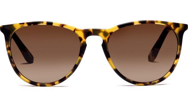 Hatoke 5520 demi-braun, CAT 3 von Lennox Eyewear