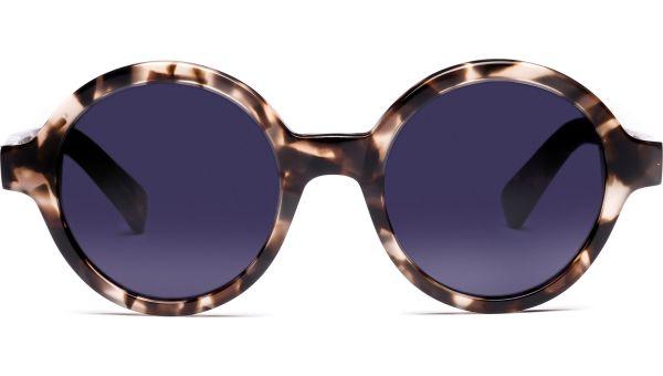 Azulai 4921 demi-braun von Lennox Eyewear
