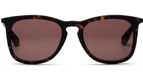 Osrun 4919 Dark-Tortoise, Gold von Lennox Eyewear
