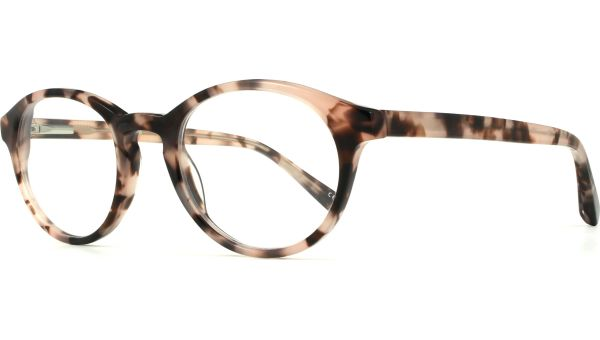 Fitzrovia 4820 Rose Tortoise von London Retro