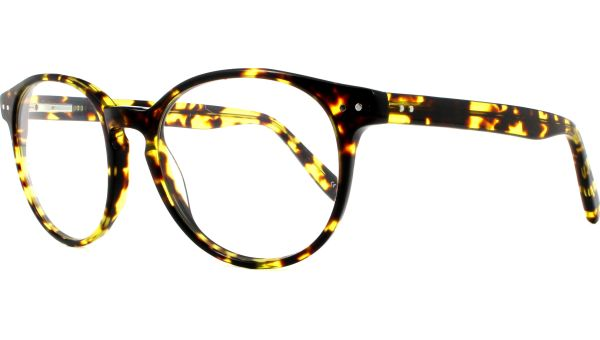 East 5220 Light Tortoise von Scout