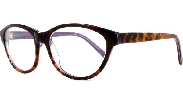 Phoenix 5316 Purple/Tortoise von Scout