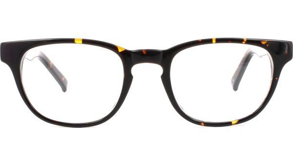 Andi 4920 Tortoise von Glasses Direct