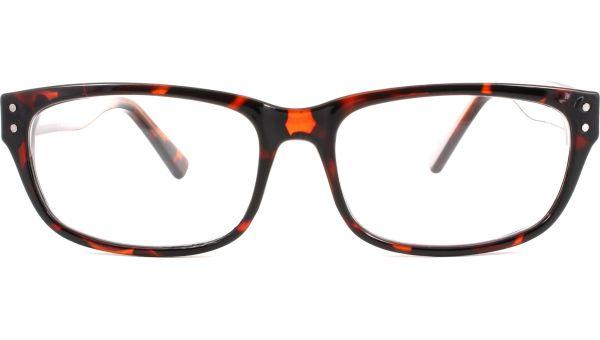 Gd Solo 561 5316 havana von Glasses Direct