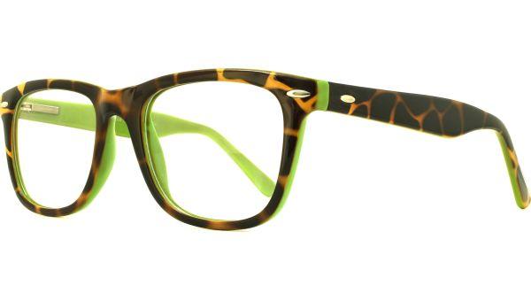 Planet  01 5021 Tort / Green von Glasses Direct