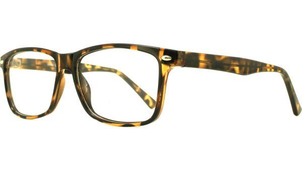 GD Collection Planet 51 5214 Tortoise von Glasses Direct