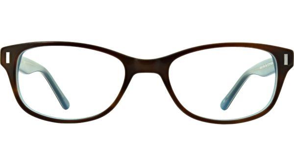 Addison 5219 Brown / Teal von Aspire