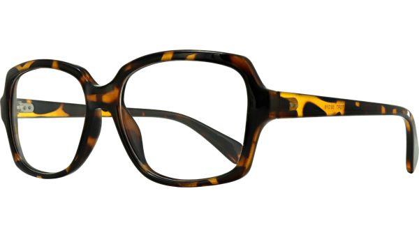 Sophia 5516 Tortoise von Glasses Direct