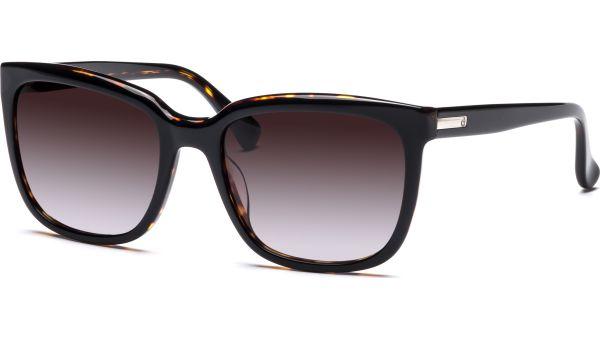 ck4253S 320 5519 Black/Havana von ck Calvin Klein