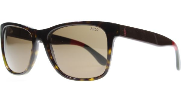 4106 556873 5718 Shiny Dark Havana von Polo - Ralph Lauren