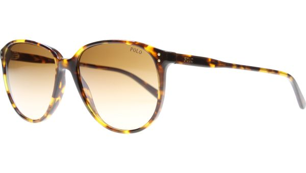 4097 513413 5418 Antique Tortoise von Polo - Ralph Lauren