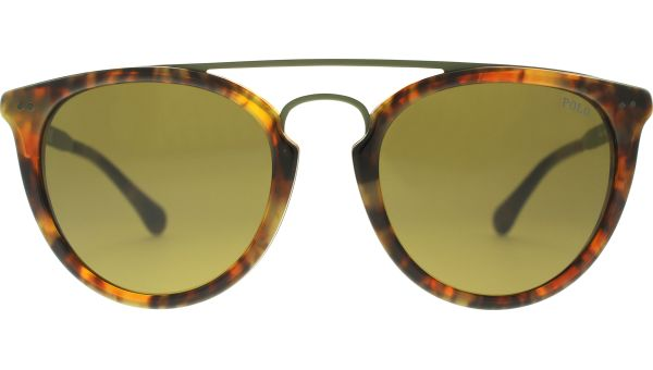 4121 501773 5119 Shiny Havana Jerry von Polo - Ralph Lauren