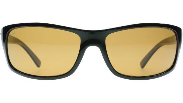Bormio 8167 6513 Shiny Black / Tortoise von Serengeti