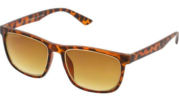 Sonnenbrille 5517 demi braun von MAUI Sports