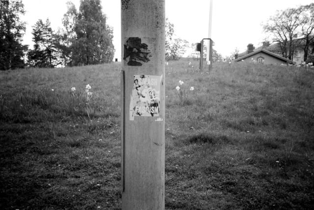 """A pole with a sticker of a fist smashing a swastika. """"Smash fascism"""" is inscribed on it. Behind the pole lies a park with flowers and trees blooming."""