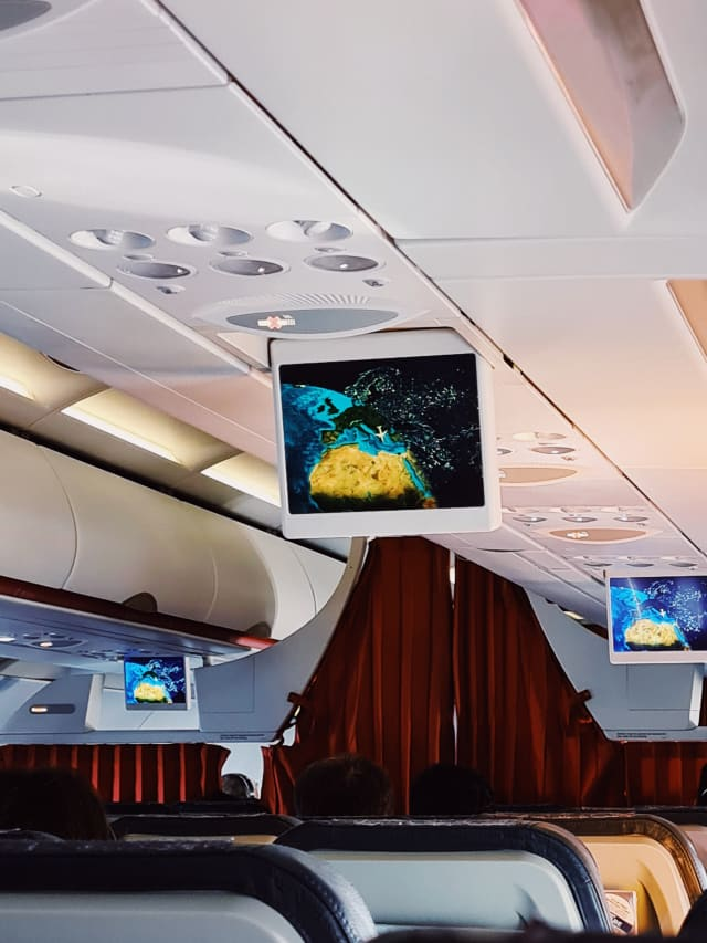 A flight monitoring screen over rows of seats. A graphic of the plane is in the middle, with a curve outlining the path of the sun. Beyond the plane, cities at night are represented as bright dots.