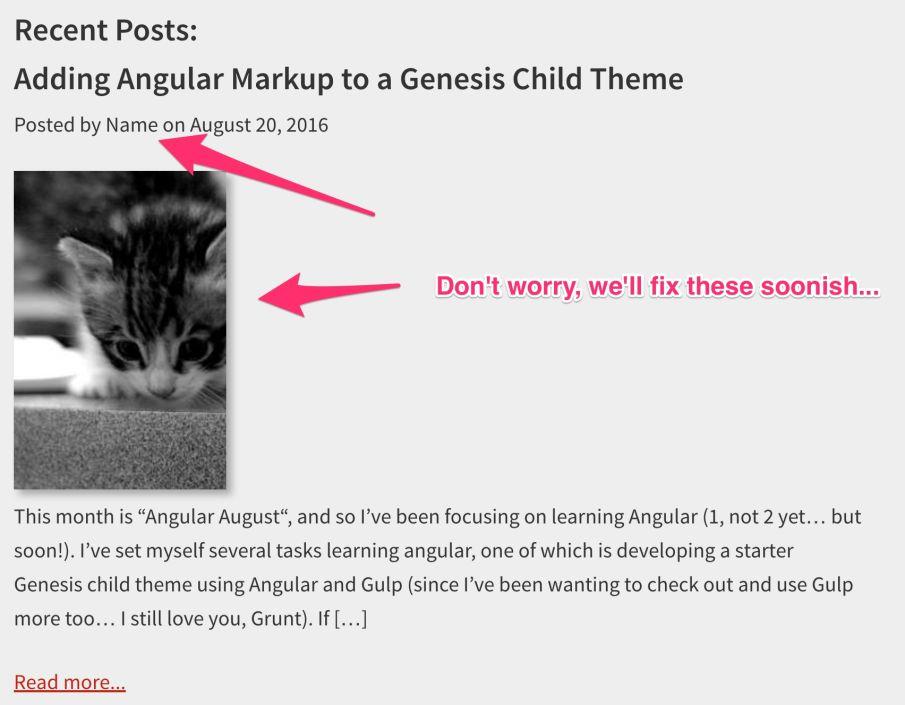 display-posts-ng-repeat