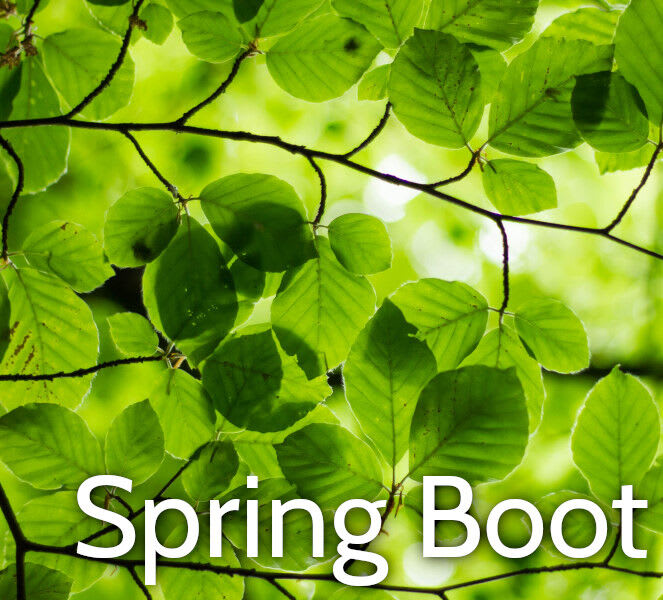 Spring Boot 2 Training Course