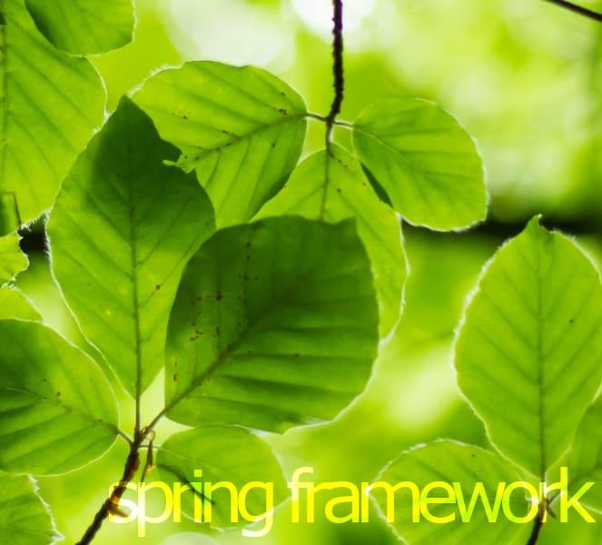 Spring Framework 5 Training Course