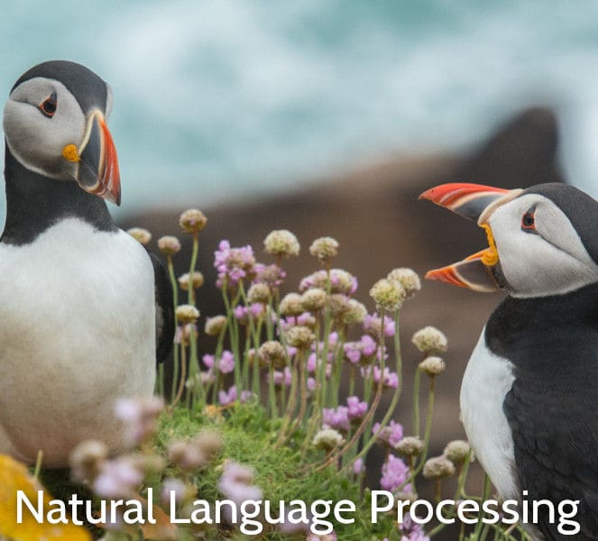 Natural Language Processing with Python Training Course