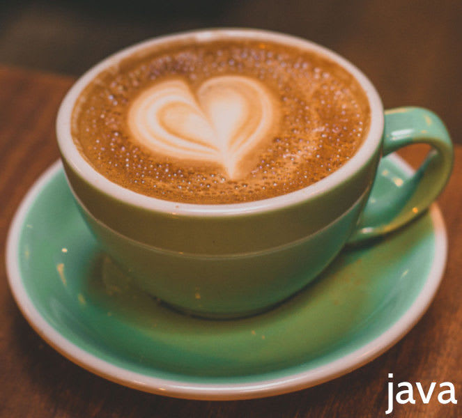 Java Training Course (Introduction to Java 13+)