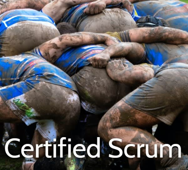 Certified Scrum Training Courses