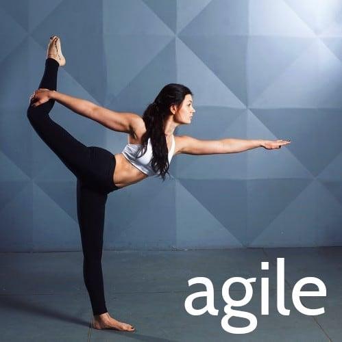 Flexible agile training from Framework Training