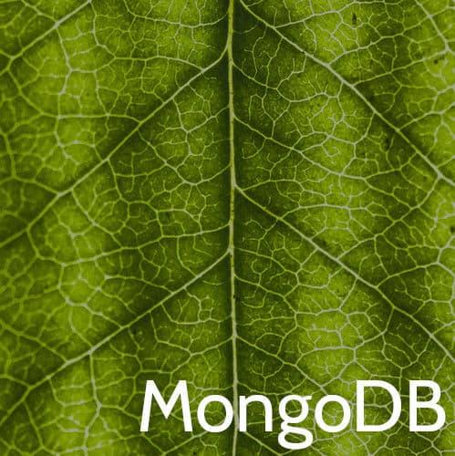 MongoDB Training Course