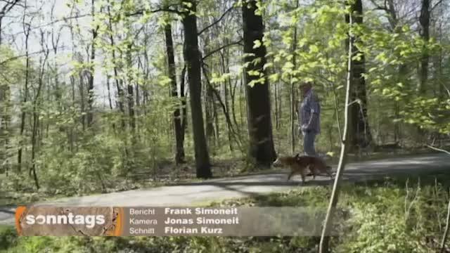 Vorschaubild von ZDF: Freund in der Not