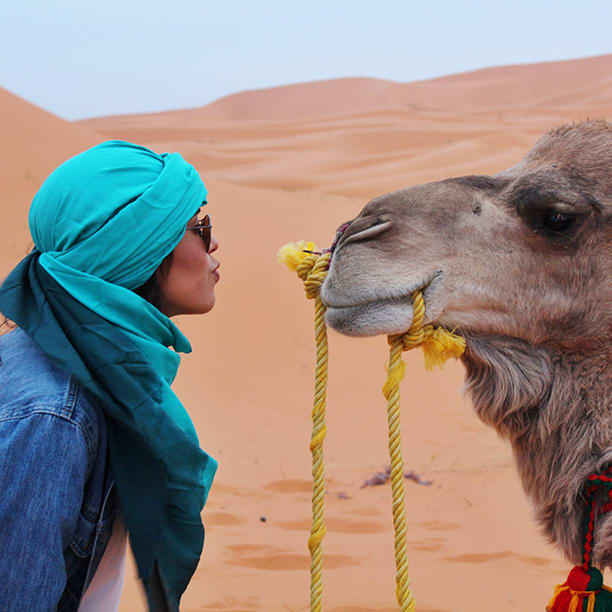Traveler Kissing a Camel
