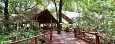 Samburu Intrepids Tented Camp