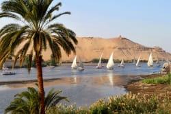 Feluccas, Aswan