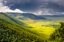 Panoramic view of Ngorongoro Crater, Tanzania