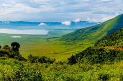 Panoramic view of Ngorongoro Crater