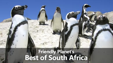 Friendly Planet's Best of South Africa