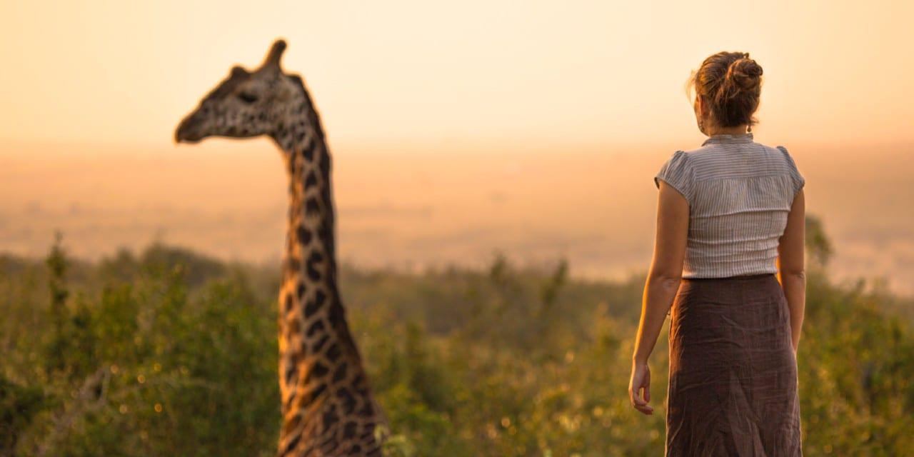 Giraffe - Kenya, Africa