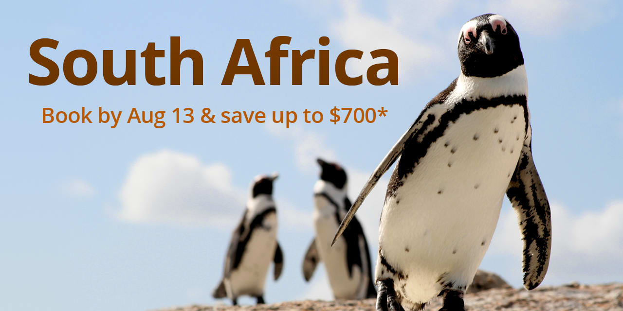 Travel to South Africa, South African Safari Tour Packages