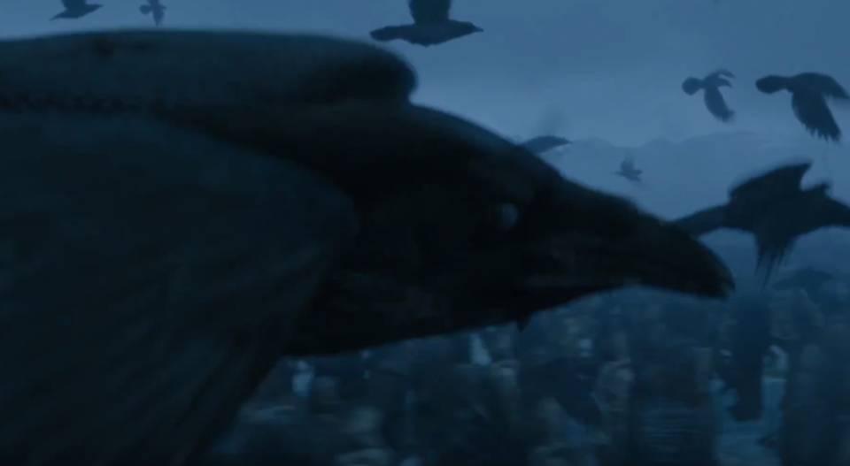 Bran, merasuki burung gagak
