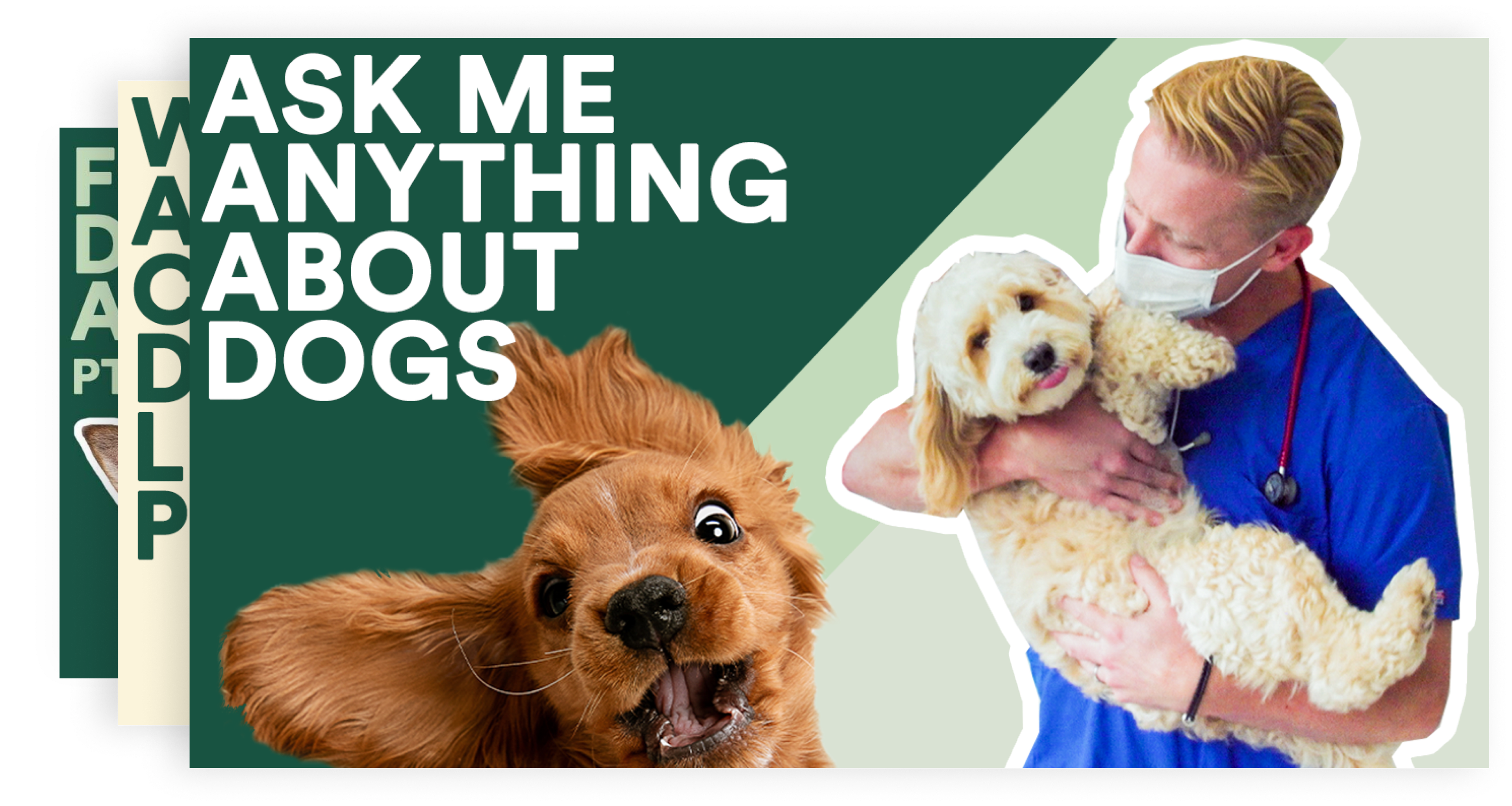 Ask me anything about dogs