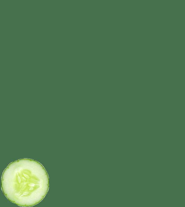 Kale Espinaca Apio Pepino y Nopal