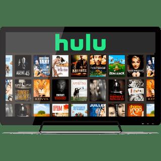 Watch Hulu on a TV.